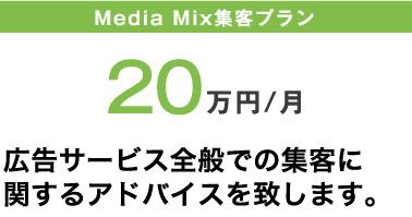 Media Mix集客プラン